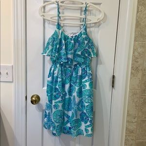 Lily Pulitzer Blue and White Pattern Dress